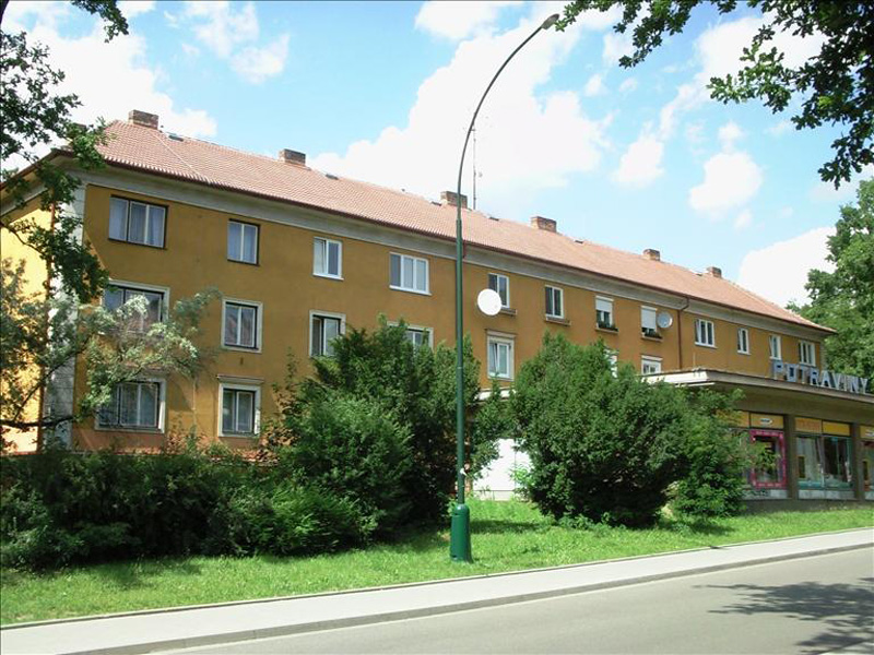 krickova2889911